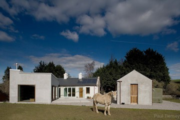 Horse with house in tipperary