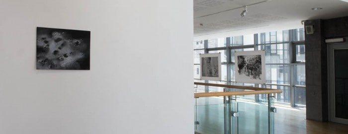 Art photography interior exhibition bray